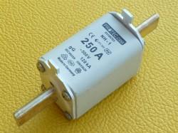 Protect Class NH1 Sicherung 250A 500V gG120KA Art. 05100703