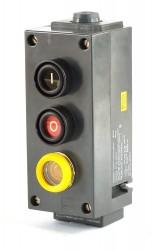 Stahl Taster 2 Fach m. Kontrollleuchte Typ 8030-131-01-60-01-60 Ausführung 54-64